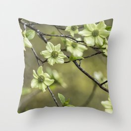 Green Kousa Dogwood Throw Pillow