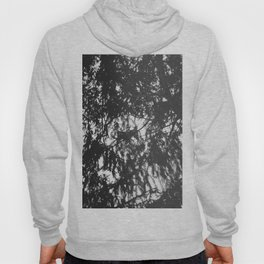 Snails eye view of the forest canopy Hoody