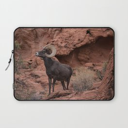 Desert Bighorn, Valley of Fire - III Laptop Sleeve