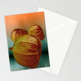 physalis - background texture Stationery Cards