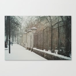 snow in wels (3) Canvas Print