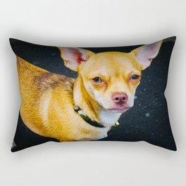 Ayutthaya Chihuahua Rectangular Pillow