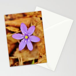 Liverwort flower Stationery Cards