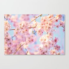 burst of bloom Canvas Print
