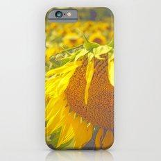 Summer Field Slim Case iPhone 6s