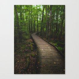 Boardwalk through Goose Creek State Park Canvas Print