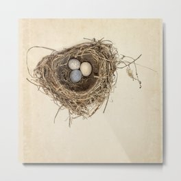 Bird Nest with Stone Eggs on Vintage Paper Metal Print