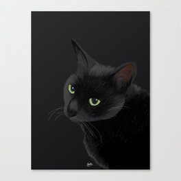 Black cat in the dark Canvas Print