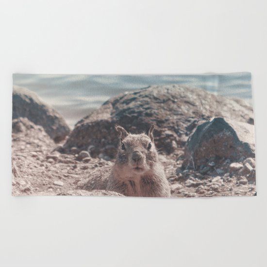 Proud Squirrel Sunbathing at the Lake Beach Towel
