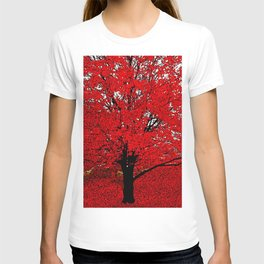 TREES Red Leaves Abundance T-shirt
