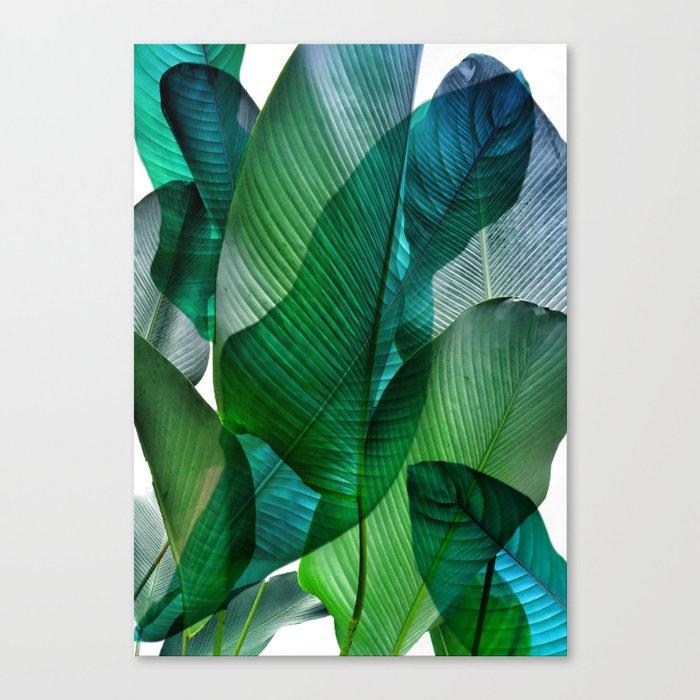 Palm leaf jungle Bali banana palm frond greens Leinwanddruck