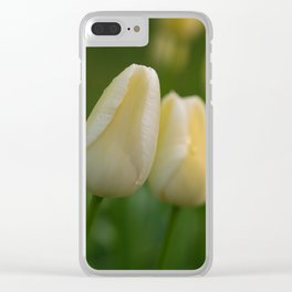 Tender Yellow Tulips in Spring in Keukenhof Clear iPhone Case