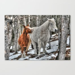 Caught in the Act Canvas Print