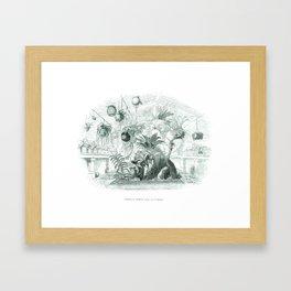 Vintage Botanical illustration, 1837 (Greenhouse) Framed Art Print