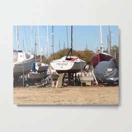 Out of Water... Metal Print