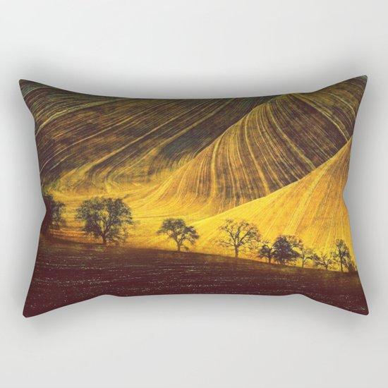 The Unfolding Rectangular Pillow