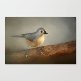 Winter Tufted Titmouse Canvas Print