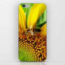 Pollination iPhone Skin