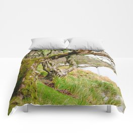 Connemara Magic Comforters