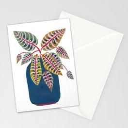 Potted Prayer Plant Stationery Cards