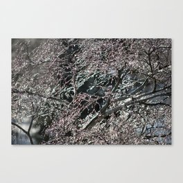 Iced Tree: Take Two Canvas Print