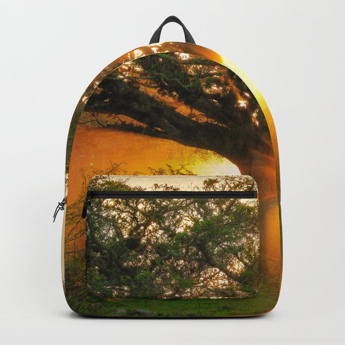 The Rebirth of Light Backpack