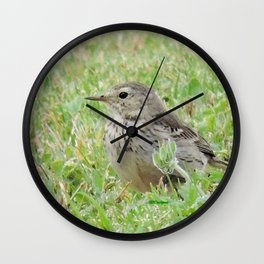 Pipit on the Lawn Wall Clock