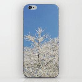White blossoms in Stuttgart, Germany iPhone Skin