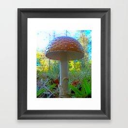 Storybook Shroom Framed Art Print