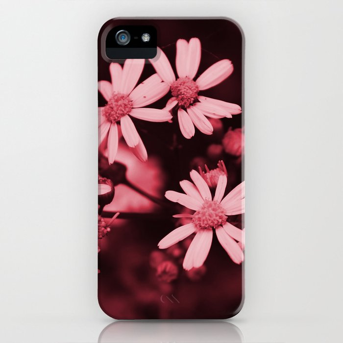 Pale Pink Wildflowers iPhone Case