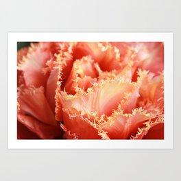 Gorgeous Macro Sensual Touch Tulip Art Print