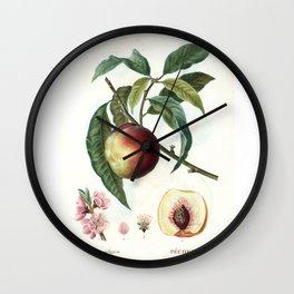 Peach on a branch Wall Clock