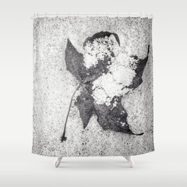 dusting Shower Curtain