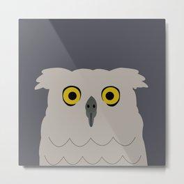 Wide Eyed Owl Metal Print