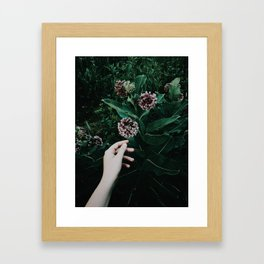 Seeking Magic Framed Art Print