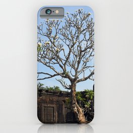 Khmer Temple Facade and Flowering Tree, Champasak, Laos iPhone Case