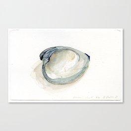 Emma's Shell Canvas Print