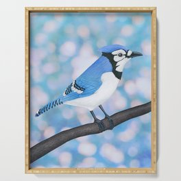 blue jay perched on a branch with sky blue bokeh Serving Tray
