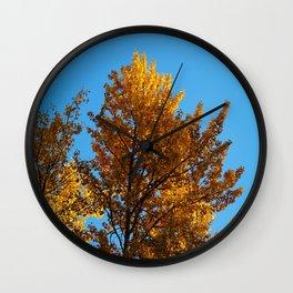 Late Fall Colour Wall Clock