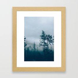 Fog over dead trees Framed Art Print