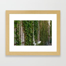 Iron Vines Framed Art Print