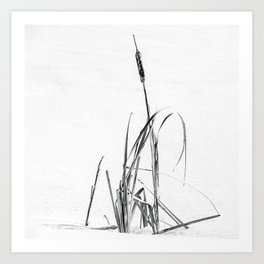Winter Bulrushes ~ Cattail in the Snow  Art Print