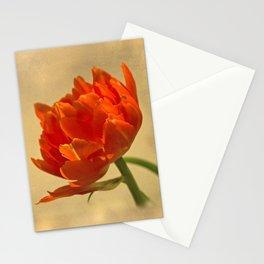 Orange Tulips Stationery Cards