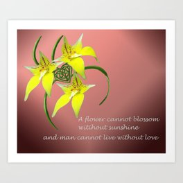 Cowslip Orchid Love Celtic Knotwork Heart Art Print