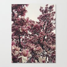 Springing Canvas Print