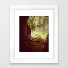 Ice-Star Woods. Framed Art Print