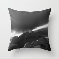 Kissing Camels B&W Throw Pillow