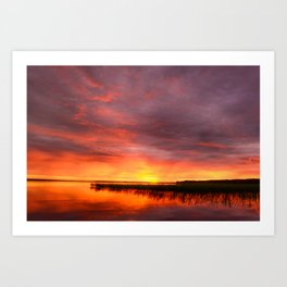 Colors summer sunset on the lake Art Print