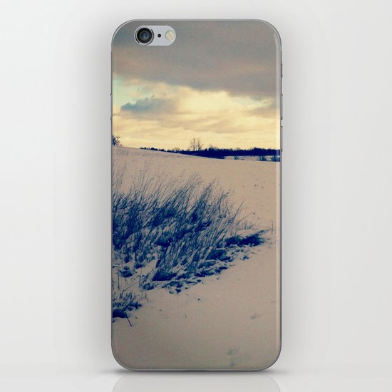 Wisconsin Winter iPhone & iPod Skin