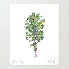 Red Russian Kale Canvas Print